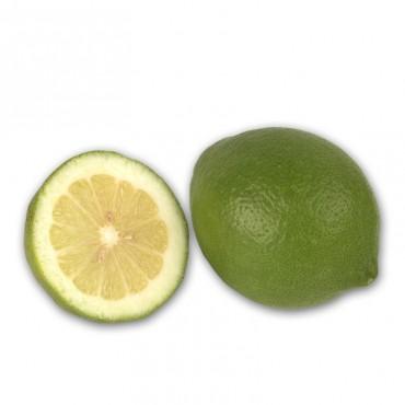 Limone verdello femminello...