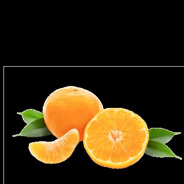 Clementine Nova (Pacco da...